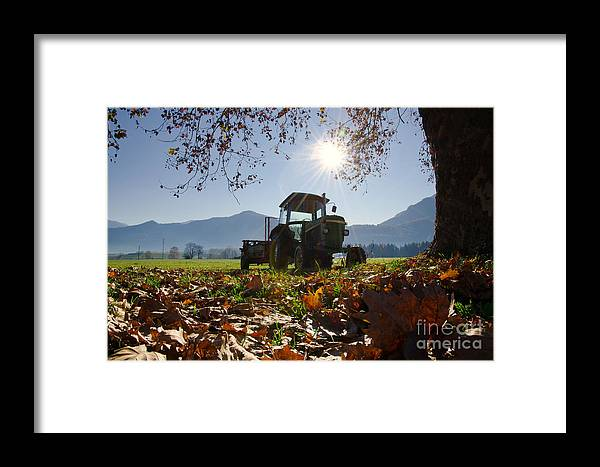 Tractor Framed Print featuring the photograph Tractor In Backlight by Mats Silvan