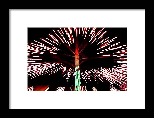 Tree Framed Print featuring the photograph Tree Of Light by Tammy McKinley