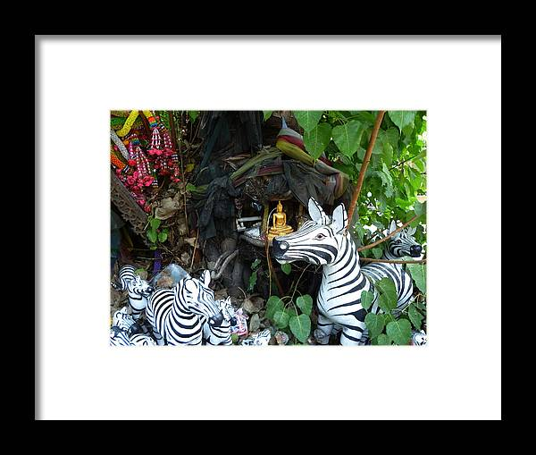 Tree Framed Print featuring the photograph Tree Shrine by Gregory Smith