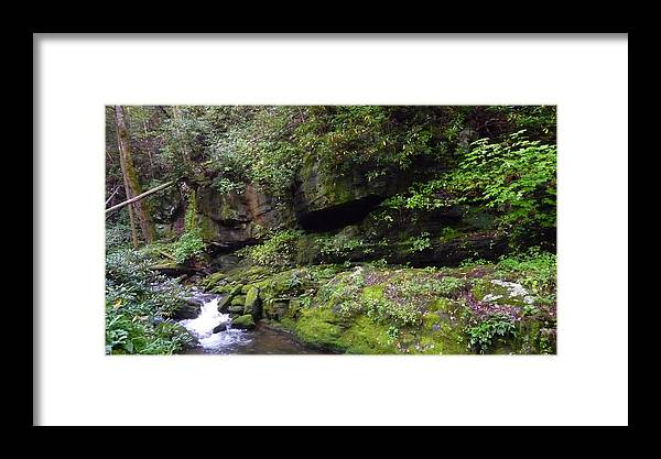 Cascading Water Framed Print featuring the photograph Trickle Of Green by Michael Carrothers