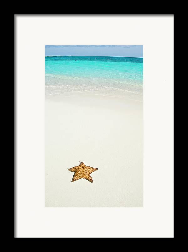 Vertical Framed Print featuring the photograph Tropical Beach And Starfish by Mehmed Zelkovic