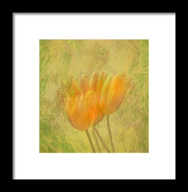 Tulips Framed Print featuring the digital art Tulip Time by Grace Dillon