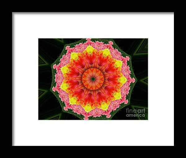 Digital Design Framed Print featuring the photograph Tulips 3 by Mark Gilman