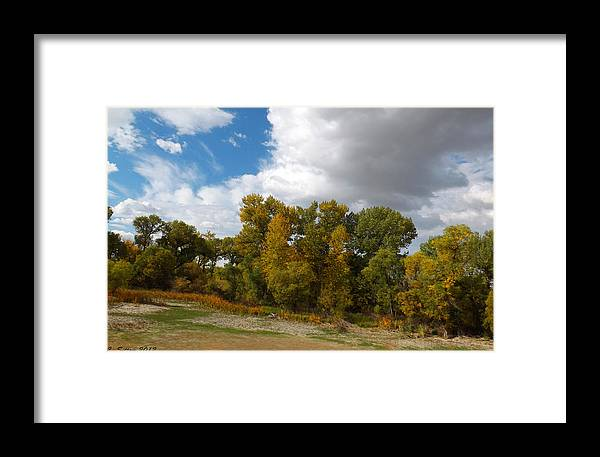 Tranquility Photographs Framed Print featuring the photograph Turning Leaves by C Sitton