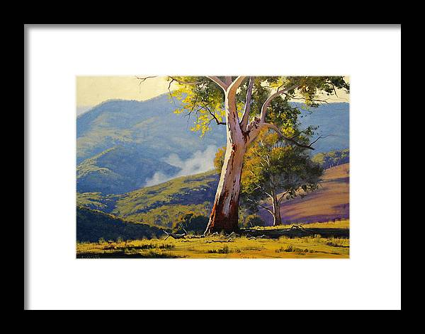 Koala Framed Print featuring the painting Turon Gum Tree by Graham Gercken