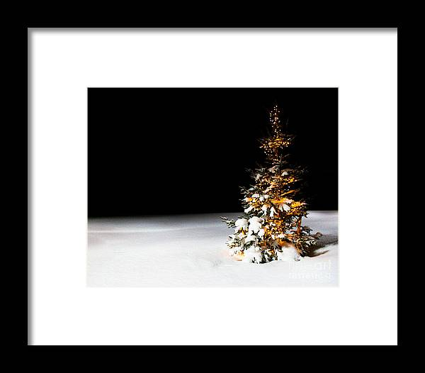 Christmas Tree Framed Print featuring the photograph Twas The Night Before Christmas by Ken Marsh
