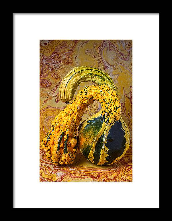 Two Green Framed Print featuring the photograph Two Gourds by Garry Gay