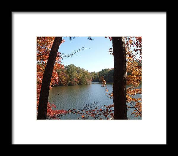 Fall Framed Print featuring the photograph Two Trees by Larry Krussel