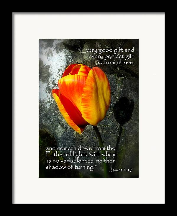 Cindy Framed Print featuring the photograph Two Tulips Shadow Scripture by Cindy Wright