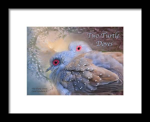 Turtle Doves Framed Print featuring the mixed media Two Turtle Doves Card by Carol Cavalaris