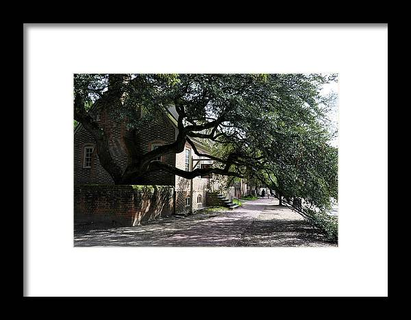 Landscape Framed Print featuring the photograph Under The Tree In Williamsburg by Rosemary Legge
