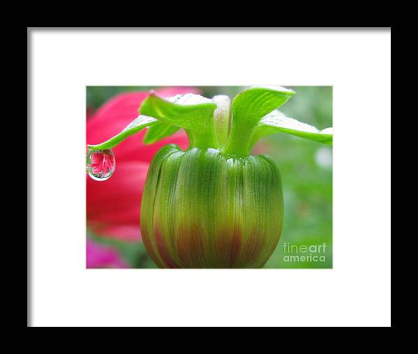 Flower Framed Print featuring the photograph Unreal Photography by Tina Marie