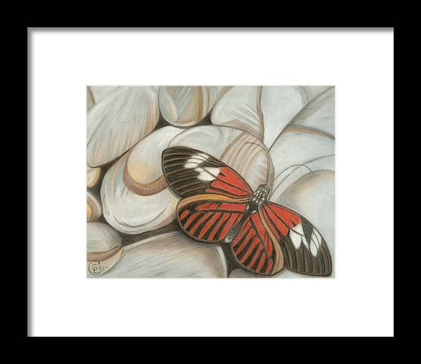 Butterfly Framed Print featuring the pastel Velvet Red by Stephanie L Carr