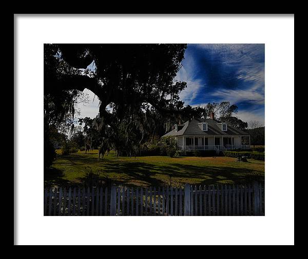 Plantation Framed Print featuring the photograph Vibrant Plantation by Maggy Marsh