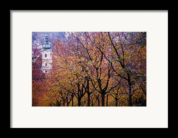 Beauty In Nature Framed Print featuring the photograph View Of Prague From Mala Strana Park by Axiom Photographic