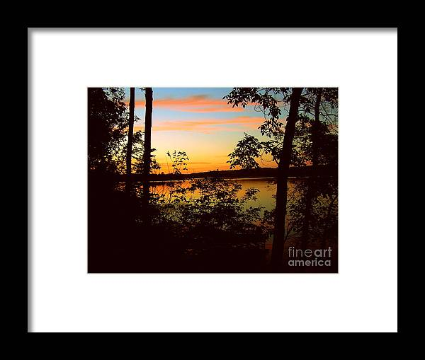 Lake Framed Print featuring the painting View Of The Lake by Alex Blaha