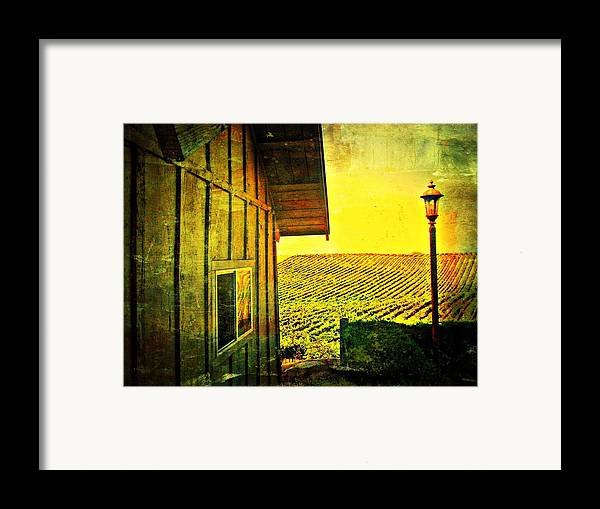 Wine Framed Print featuring the photograph Vineyard Reflection by Kevin Moore