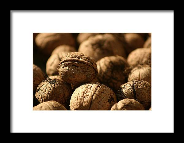 Autumn Framed Print featuring the photograph Walnut by Emanuel Tanjala