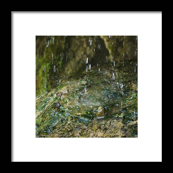 Water Framed Print featuring the photograph Water Droplets by Joseph Shaffer