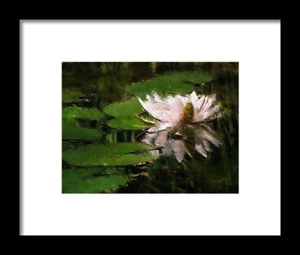 Water Lilly Framed Print featuring the digital art Water Lilly by Heiko Mahr