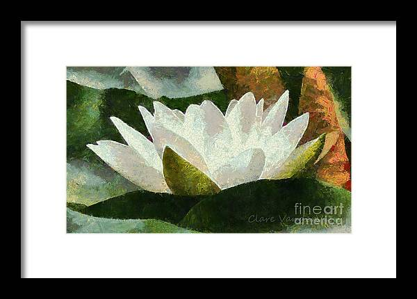 Water Lily Framed Print featuring the photograph Water Lily by Clare VanderVeen