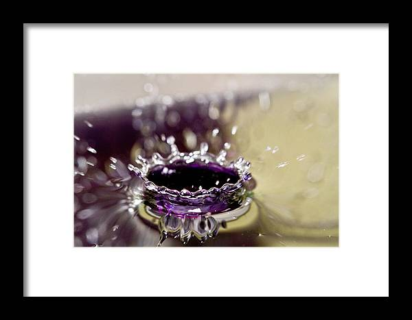 Water Framed Print featuring the photograph Waterdrop12 by Danielle Silveira