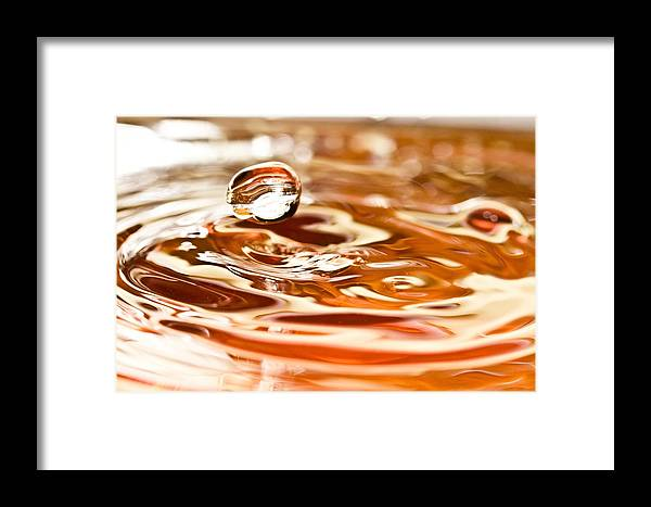 Water Framed Print featuring the photograph Waterdrop8 by Danielle Silveira