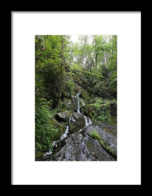 Waterfall Framed Print featuring the photograph Waterfall In The Forest by Megan Cohen