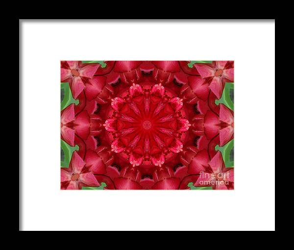 Abstract Framed Print featuring the photograph Watermelon by Paulina Roybal