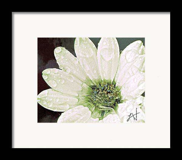 Large White Flower Close Up Framed Print featuring the digital art Wet Petals by Artist and Photographer Laura Wrede