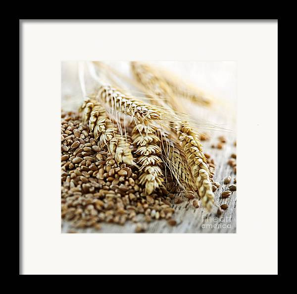 Wheat Framed Print featuring the photograph Wheat Ears And Grain by Elena Elisseeva