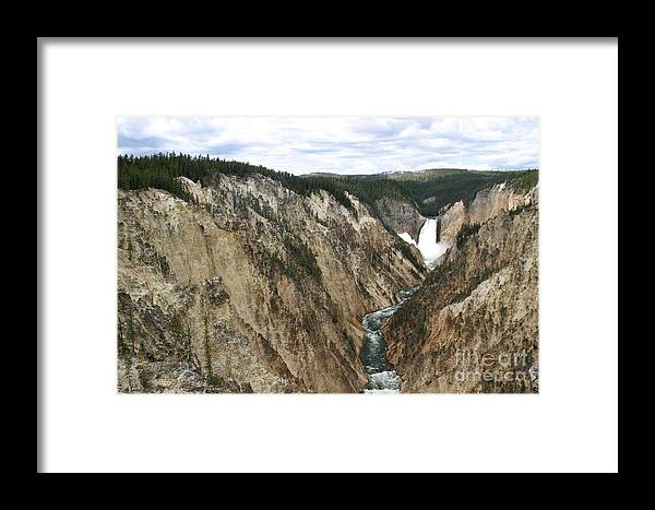 Lower Falls Framed Print featuring the photograph Wide View Of The Lower Falls In Yellowstone by Living Color Photography Lorraine Lynch
