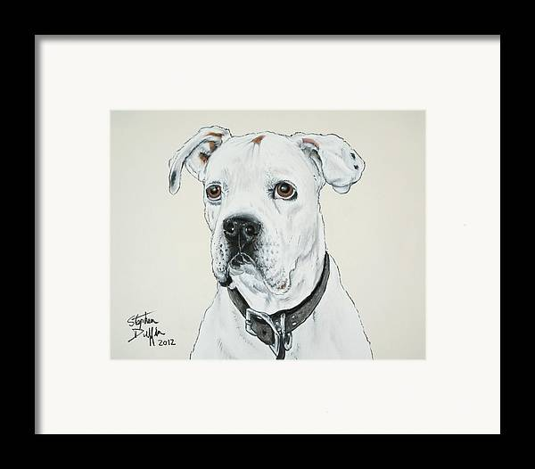 Boxer Framed Print featuring the pastel Will You Love Me... by Stephen Duffin