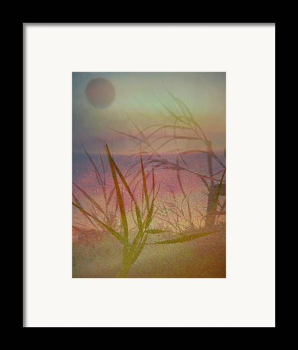 Scenery Framed Print featuring the photograph Windswept by Shirley Sirois