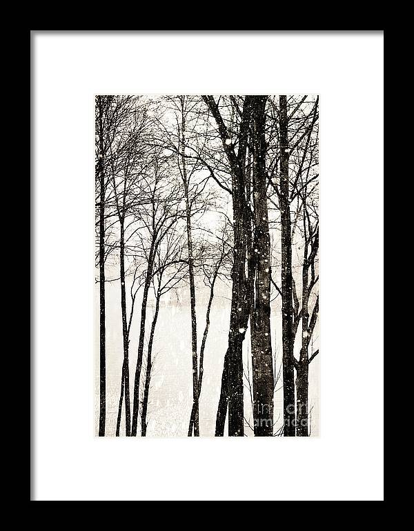 Snow Framed Print featuring the photograph Winter Landscape On Snowy Day by Kim Fearheiley