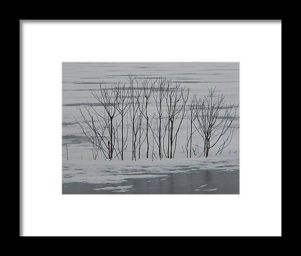 Snow Framed Print featuring the photograph Winter Marsh by Helen ONeal