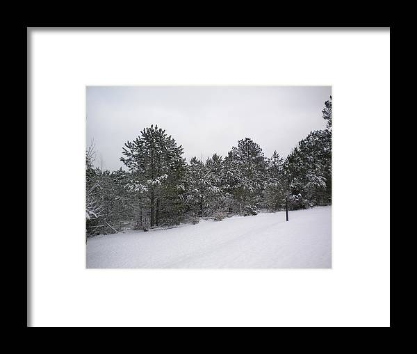 Winter Scene Framed Print featuring the photograph Winter Slope by Tessa Priddy