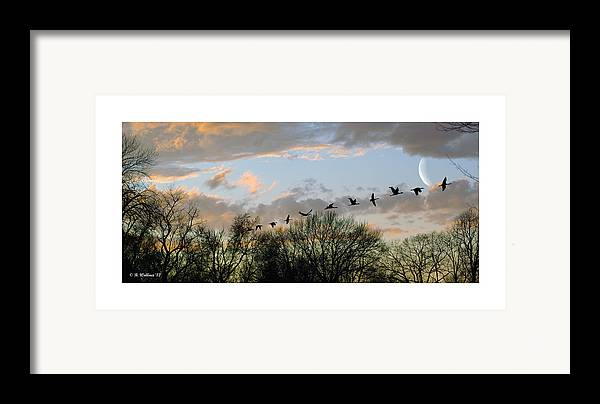 2d Framed Print featuring the photograph Winter Sunset Silhouette by Brian Wallace
