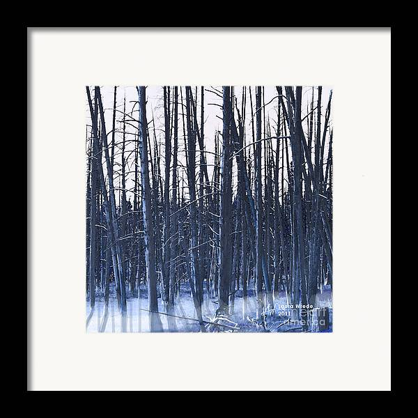 Nature Framed Print featuring the digital art Winter Trees by Artist and Photographer Laura Wrede