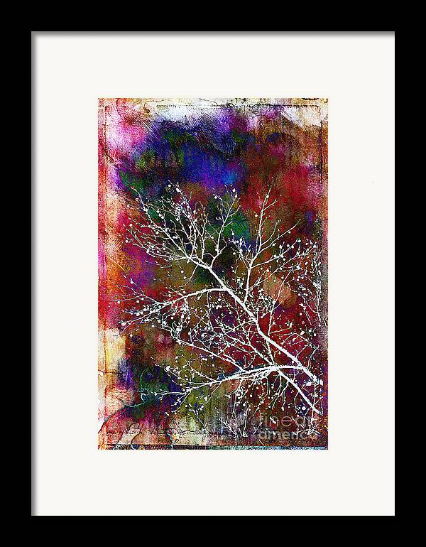 Winter Framed Print featuring the photograph Winter Wishes by Judi Bagwell
