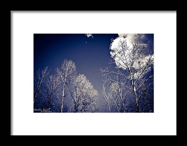Framed Print featuring the photograph Winter Wonders by Matthieu Russell