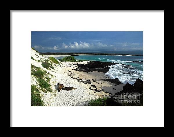 Ecuador Framed Print featuring the photograph Wizard Hill Beach by Fabian Romero Davila