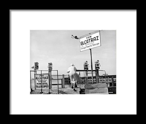 1950's Framed Print featuring the photograph Woman Looking At Alcatraz by Underwood Archives