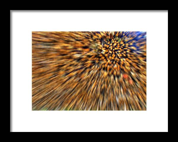 Wood Pile Framed Print featuring the photograph Wood Pile Blur by Nigel Jones