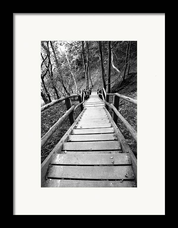 Treppe Framed Print featuring the photograph Wooden Stairs by Falko Follert