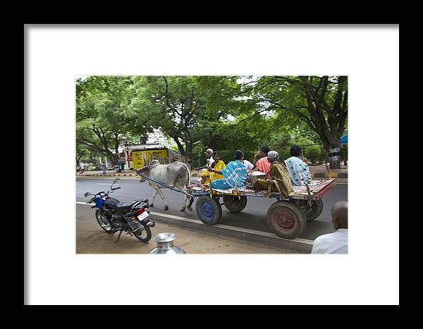 Bullock Dray Framed Print featuring the photograph Ye Old Bullock Dray by Lee Stickels