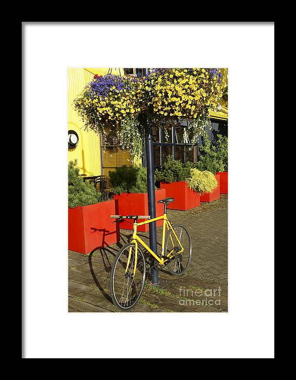 Vancouver Framed Print featuring the photograph Yellow Bicycle Vancouver Canada by John Mitchell