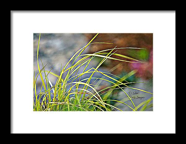 Flora Framed Print featuring the photograph Yellow Grass by Debbie Sikes