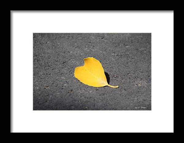 Yellow Heart Framed Print featuring the photograph Yellow Heart by Amy Gallagher