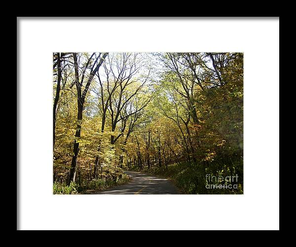 Fall Framed Print featuring the photograph Yellow Path by Yumi Johnson